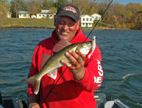 Walleye Caught On Artificial Bait