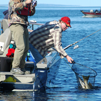 image of anglers netting large pike
