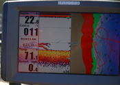 Crappies On Humminbird Screen