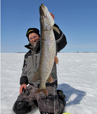 image of large Northern Pike caught using a tip up