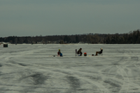 image of anglers ice fishing