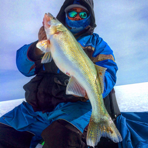 image of andy walsh with big walleye