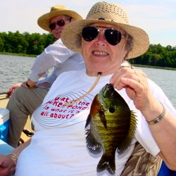 Bluegill, Betty Hanus 7-23-06