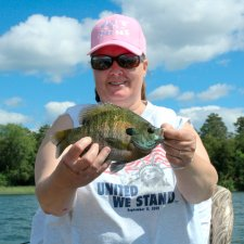 Bluegill Karen Hergaard August 2009