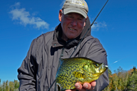 image of crappie caught on lindy tungsten toad