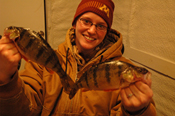 Jumbo Perch Deer River MN