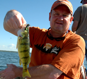 Cass Lake Perch Fishing