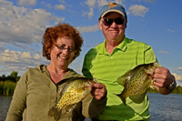 Crappies Caught By John and Nancy Engler