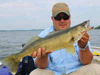 Walleye caught by Tom Batiuk on Rainy Lake