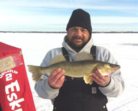 Walleye Upper Red Lake