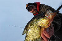 Image of Dave Bennet with large Crappie