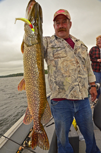 Northern Pike caught by George Hauck on Winnibigoshish