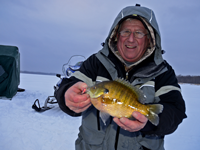image of Arne Danielson holding Blugill on the ice