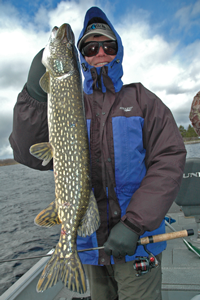 image of Dale Wheeler, New Orleans LA holding a larger Northern Pike that he caught on Round Lake