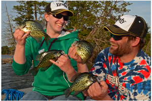 image of anglers with nice crappies