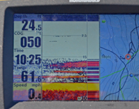 Crappies appear on humminbird screen