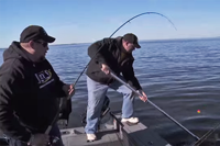 image links to fish ed walleye video