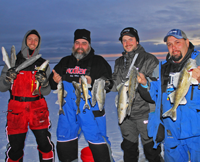 image of ice fishermen with limit of Walleyes