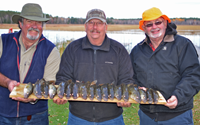 image of fishermen with limits of Walleyes