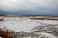 image of ice at White Oak Lake