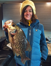 image of giant crappie