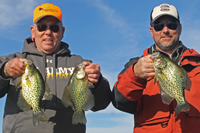 image of 2 men holding crappies