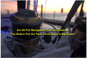 image links to video about modern fish act