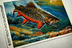 image of minnesota trout stamp