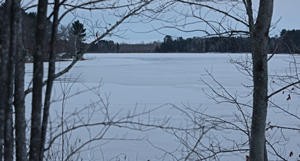 image of ice on hale lake grand rapids