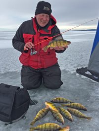 image of perch caught on lindy tingsten bug