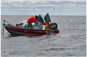 image of fishermen catching walleye