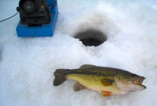 Bass on the ice 2-7-10
