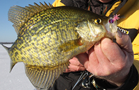image links to ice fishing article