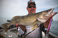 image links to article about lake mille lacs walleye
