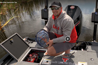 image links to bass fishing video