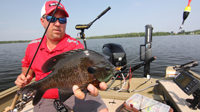 image of Scott Glorvigen with big bluegill