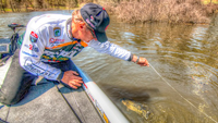 image links to bass fishing article