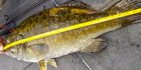 image links to news about record smallmouth bass