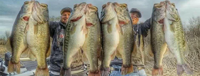 image links to stories about huge fish catches