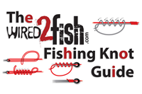 image links to fishing knots article
