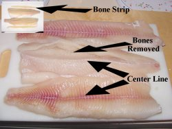 Northern Pike Y Bones Removed click to enlarge