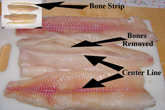 image of pike fillets with y bone removed