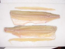Northern Pike Fillet with Y Bone Removed