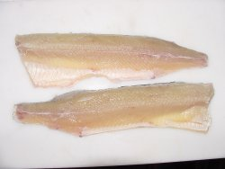 Northern Pike Fillet
